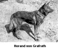 horand von Grafrath