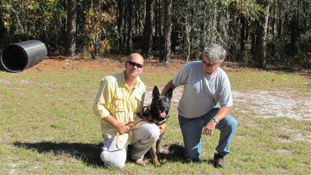 GatorlandK9's Service Protection Dogs help Disabled Veterans with PTSD, TBI, Neurological and Physical Disabilities